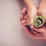 Enkeltauglich leben – Gemeinwohldienlich wirtschaften